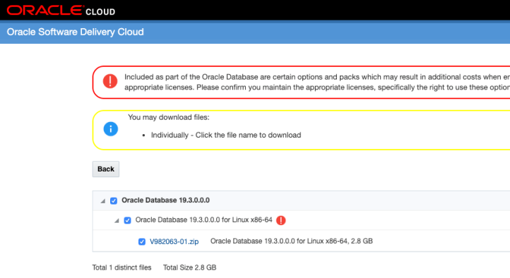 Oracle Database 19c EE on Docker – An Oracle Spin by Alex Lima